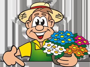 Blumen & Gartenbau Franz