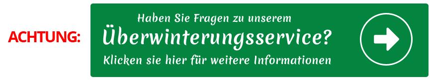 Blumenmeinhardt.de | berwinterungsservice Start